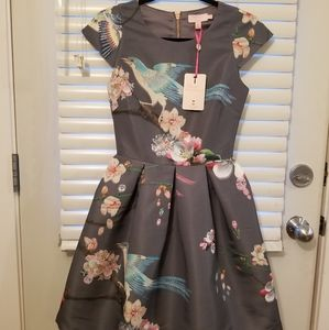 Ted Baker Dress Size 0 which is size 2 US